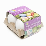 Darice Large Plastic Crafting Eggs 4 pack 30052010