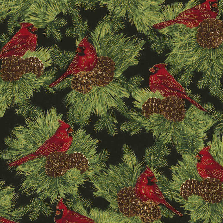Timeless Treasures Christmas Morning Cardinals on Pine CM5281 Black