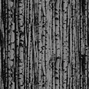 Benartex Evening Frost 9657-12 Birch Tree Black/Grey
